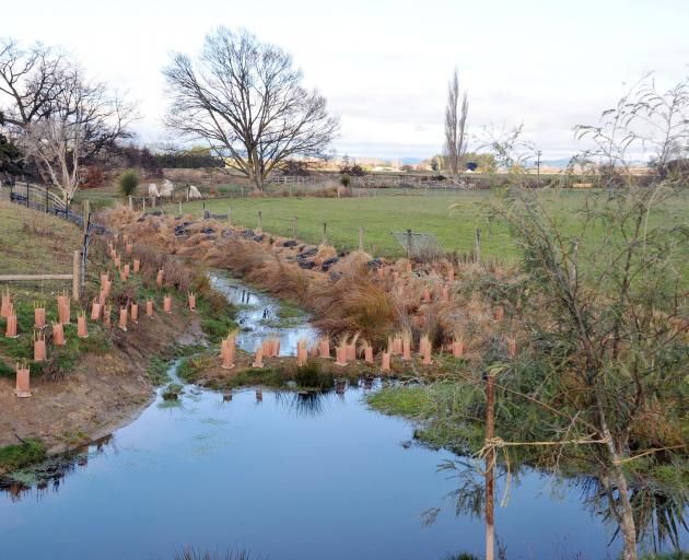 On one Pomahaka catchment property, riparian planting and a sediment bund placed across the...