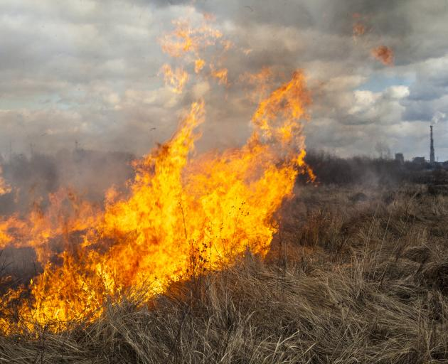 Fire chiefs in the Selwyn district say it has been a quieter holiday fire season. Photo: Supplied