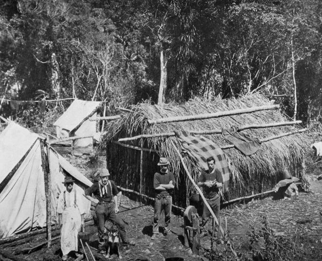 A punga hut and tents serve as a home for men working in the New Zealand bush. — Otago Witness,...