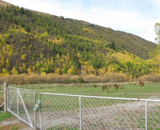 Land on Jopp St, Arrowtown, earmarked for housing. PHOTO: TRACEY ROXBURGH