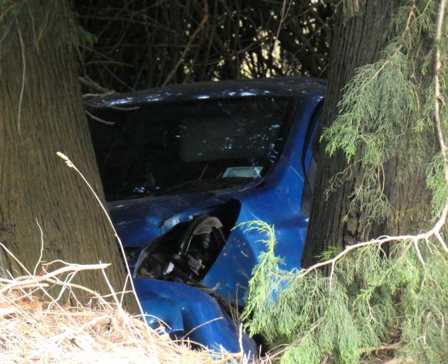 A crashed car sits among pine trees near Weka St, Makarora. Photo: Simon Henderson
