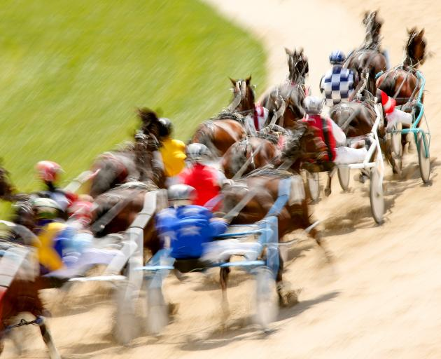 Two horse trainers are facing assault allegations. Photo by Martin Hunter/Getty Images)