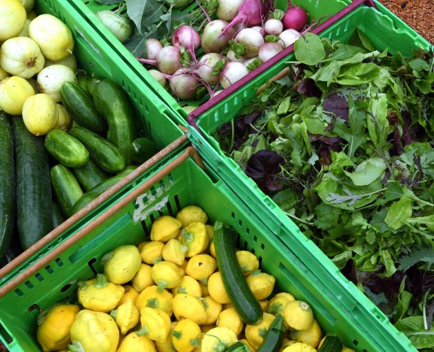 Vegetables from Pleasant River Produce. Photo: Stephen Jaquiery