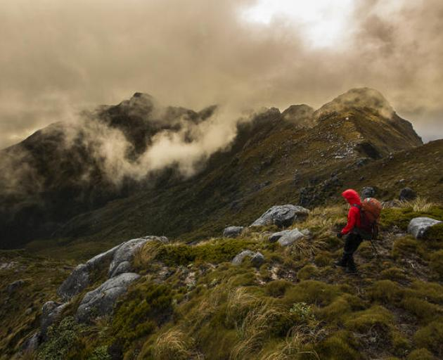 Missing hikers found after 18 days in New Zealand wilderness