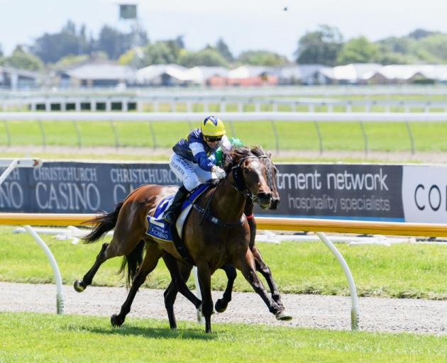 A new synthetic race track wil be built at Riccarton Park in Christchurch. Photo: Getty Images