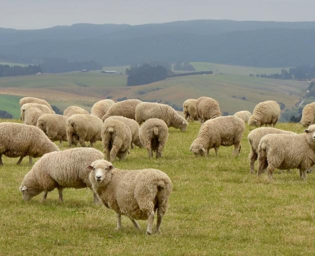 The survey shows farmer sentiment has stabilised after concerns about government intervention.