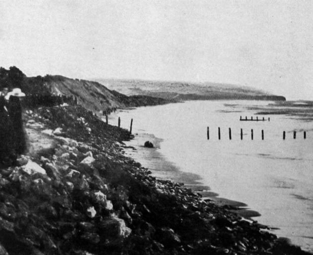 Stones and rocks placed recently to protect the sandhills at St Clair, which were melting away. —...