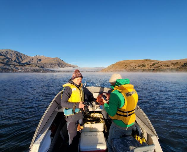 Back in the field and on the water ... University of Otago intern Kari-Anne van der Zon and...