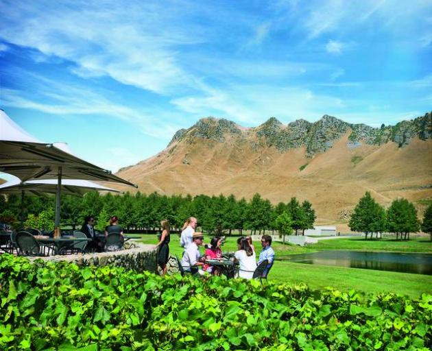 Hawke's Bay Craggy Range vineyard featured in the list of the world's top 50. Photo: NZ Herald/File