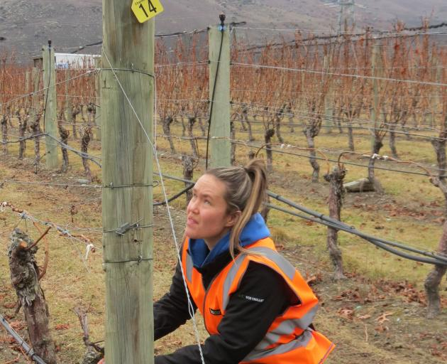 Annabel Angland, of Peregrine Wines, is this year's Corteva Central Otago Young Viticulturist of...