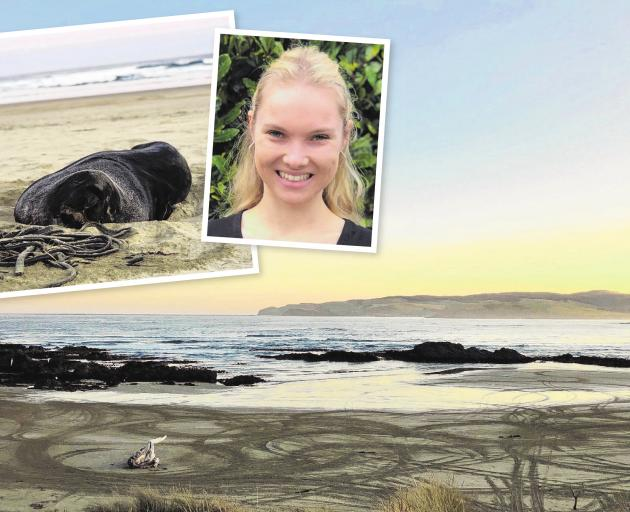 Sea Society founder Sian Mair, of Invercargill, is petitioning to ban vehicles from Catlins...