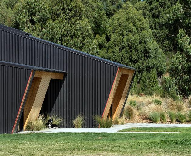 """The building """"leans"""" forward, forming overhangs that protect the interior from the northern sun."""