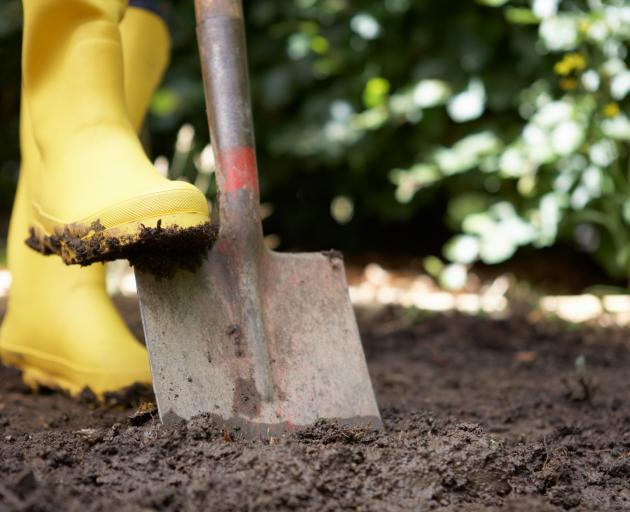 Do not dig wet soils as they become concrete-like when they dry out. PHOTO: GETTY IMAGES
