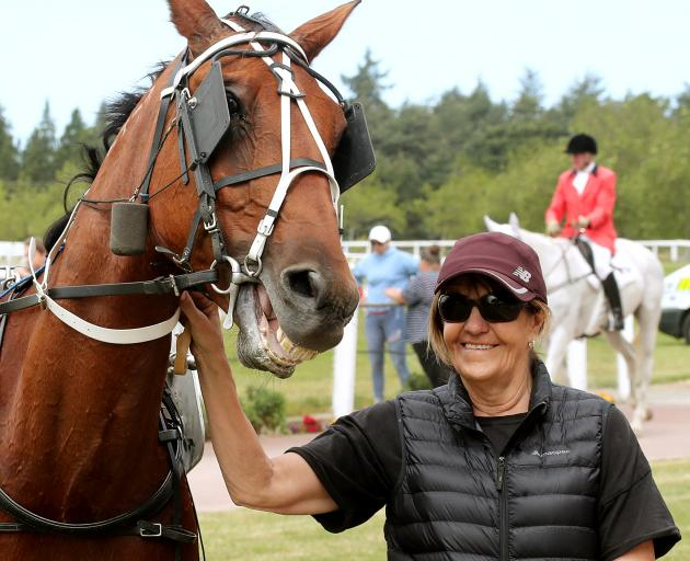 Lyn Prendergast with the horse she trains, pacer One Direction. Photo: Race Images