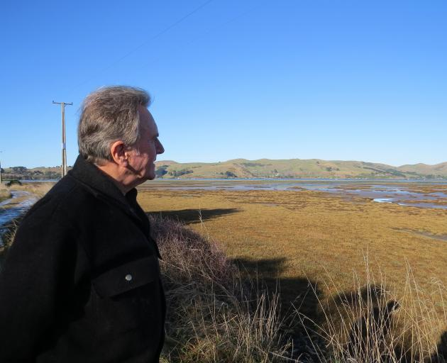 Adrian Hall looks out over the Aramoana saltmarsh, which has been protected from doughnuts by the...