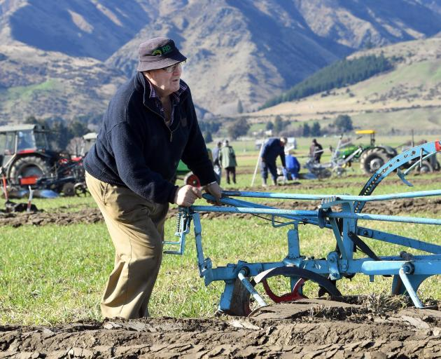 Tom Fowler (86), of Tapanui, uses a plough manufactured by his family some time between 1870 and...