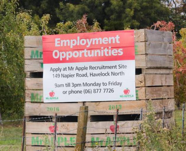 Looking for workers in lockdown in April. Photo: NZ Herald