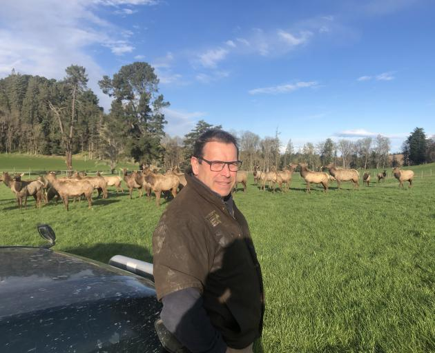 Raincliff Station deer farmer David Morgan has been vocal about his concern for the venison...