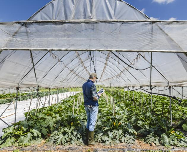 Production and consumption both have lessons to teach us about the future of food. PHOTO: GETTY...