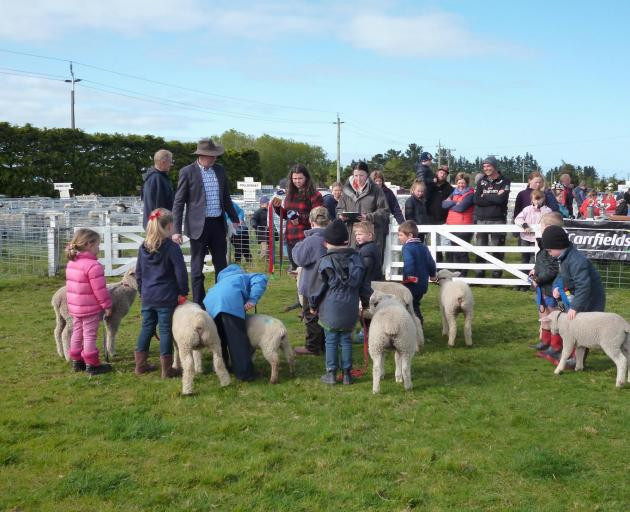 The Selwyn Spring show will not go ahead this year due to concerns over Covid-19. Photo: Supplied
