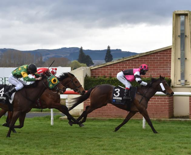 Flying Sardine, in the hands of Yong Chew, wins race 3 at Wingatui yesterday ahead of Meara Mary,...
