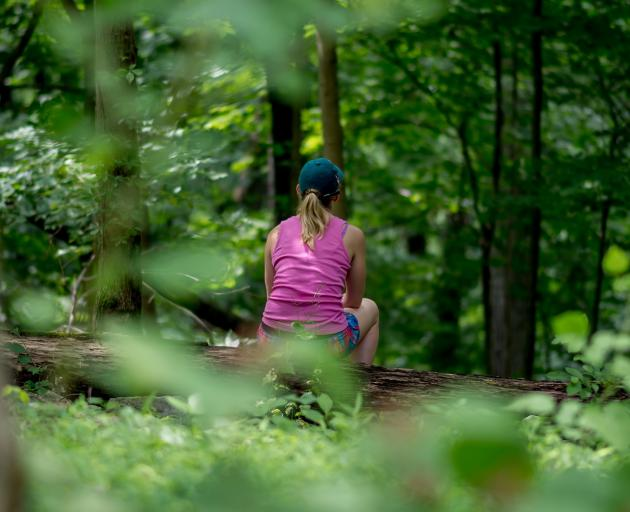 Forest bathing allows you to soak in the experience of being in nature. PHOTO: TNS