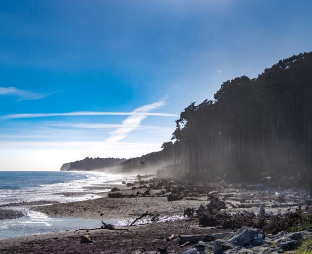 Mahitahi (Bruce Bay) on the West Coast. Photo: Getty Images