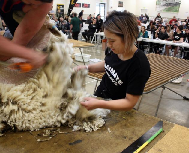 Chelsea Collier, of Gore, competes in the woolhandling event at the Waimate Shears earlier this...