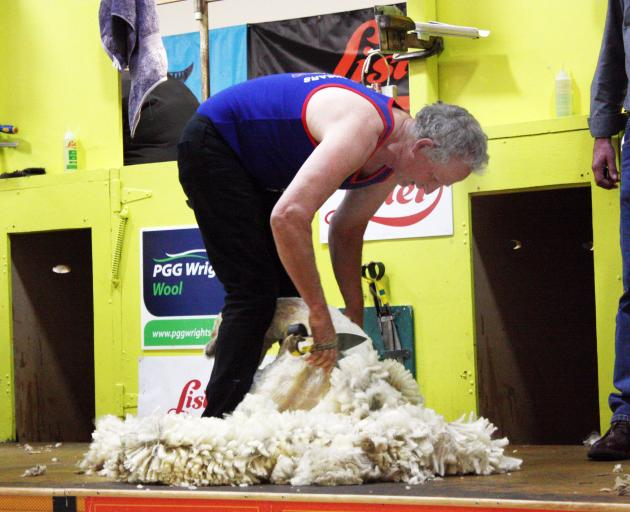 Tony Dobbs on his way to winning his 100th blade shearing title.