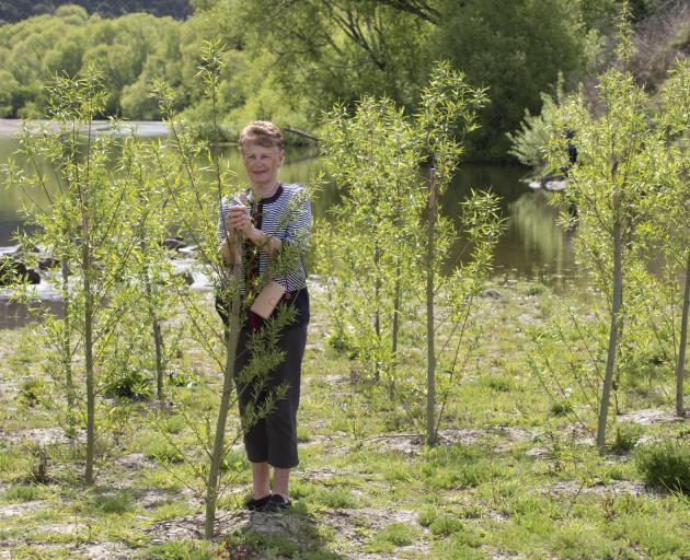 Judith O'Connor, of Outram, says willow trees planted at Outram Glen, alongside the Taieri River,...