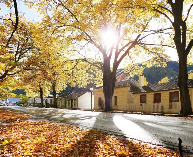 Arrowtown displays its autumnal grandeur. PHOTO: TRACEY ROXBURGH