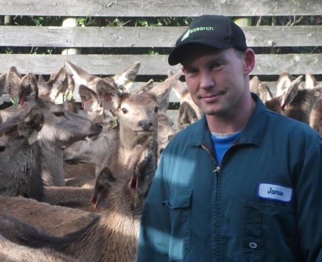 AgResearch farms system scientist Jamie Ward, of Invermay, recently completed new research on the...