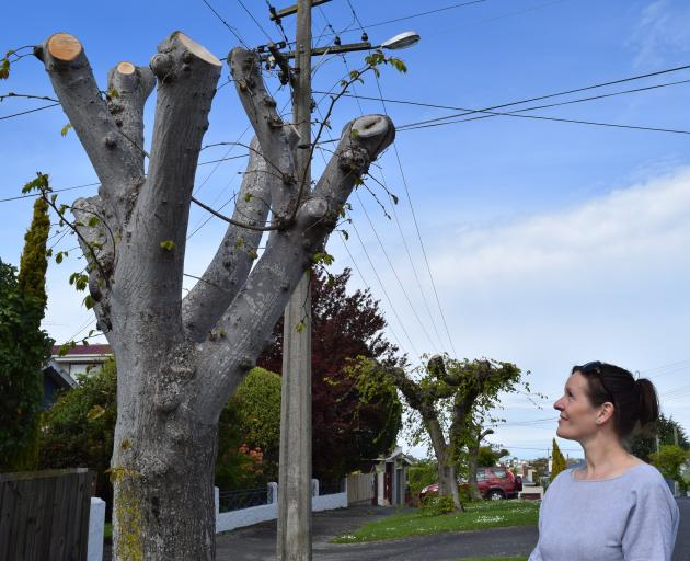 Mandy Dreadon, of Maryhill, inspects a tree recently pruned in her street. PHOTO: SHAWN MCAVINUE