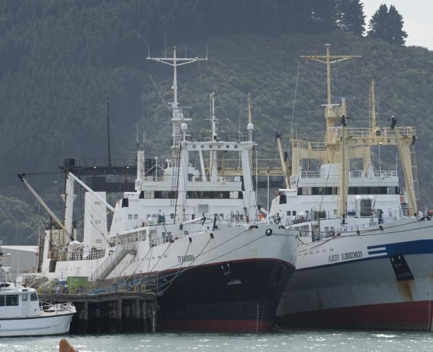Te Raukura (left) and Aleksey Slobodchikov berthed at the T/U sheds in Otago Harbour. PHOTO:...
