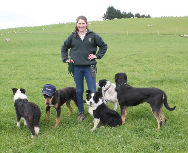 Martha Broughton was able to combine her passion for dogs with her dream job as genetic manager of the sheep block at Mount Linton. PHOTO: LUISA GIRAO