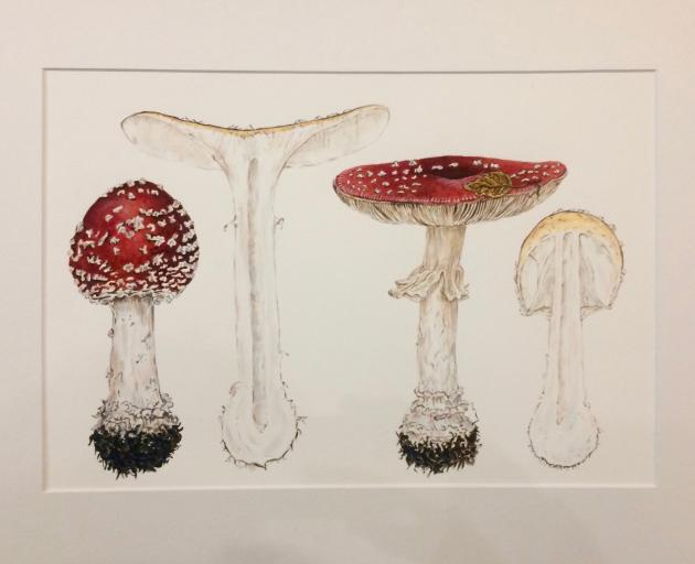 Agaricus Muscarius, by Maria Wansink