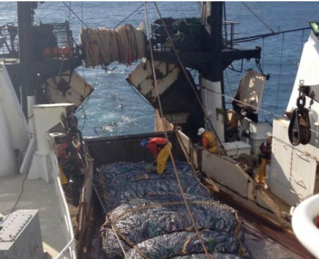 A Sealord fishing boat at sea. Photo: RNZ