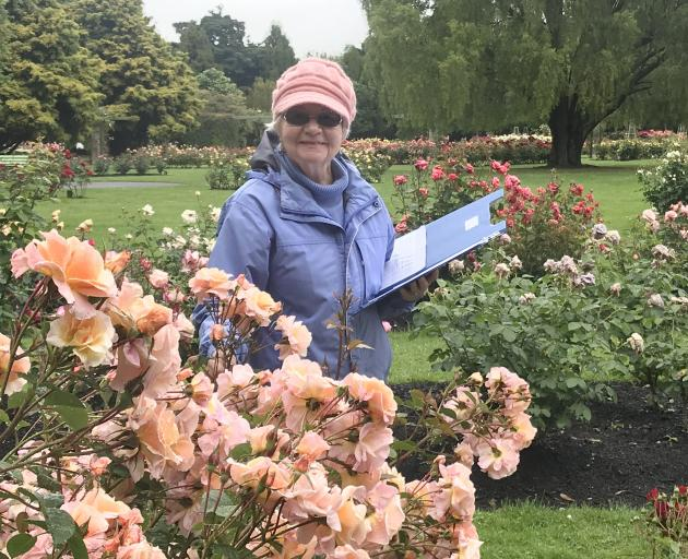 Ignoring the rain, trial judge Diane Taylor, of Feilding, considers some of the whose assessments...