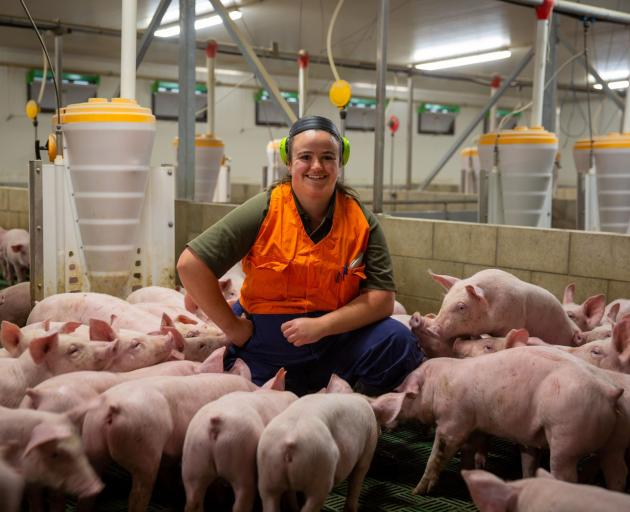 Nicky Tily is junior stockperson on a pig farm near Sheffield. PHOTO: SUPPLIED