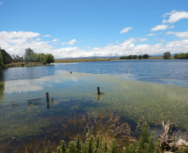 Blakelys Dam with and without the sun. The 2.5kg rainbow trout that almost got away. PHOTOS: MIKE...