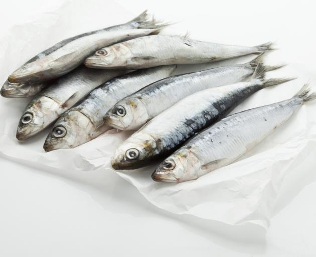 Whitebait and sardines  contain good amounts of calcium per serving.