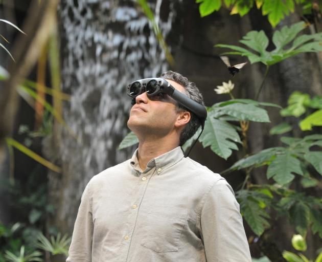 Artist Joseph Michael checks out his augmented reality work in Otago Museum's Tropical Forest. Mr...