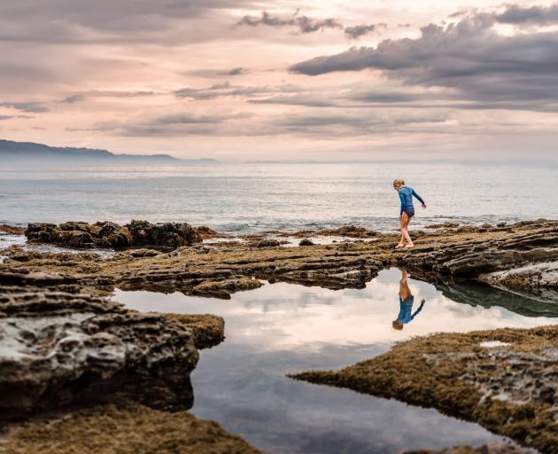 Every rock pool has its own community of barnacles, small fish, shellfish, seaweed and algae. PHOTO: GETTY IMAGES