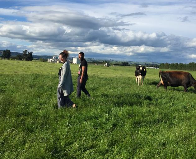 Tapanui dairy workers Kerryn Brunton and Daniel Bergin are enjoying rural life. PHOTO: MARY-JO...