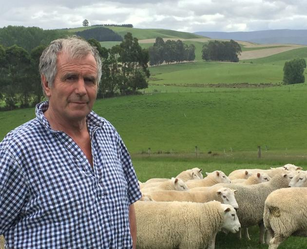 Sheep breeder Garth Shaw, of Wharetoa Genetics. PHOTO: MARY-JO TOHILL