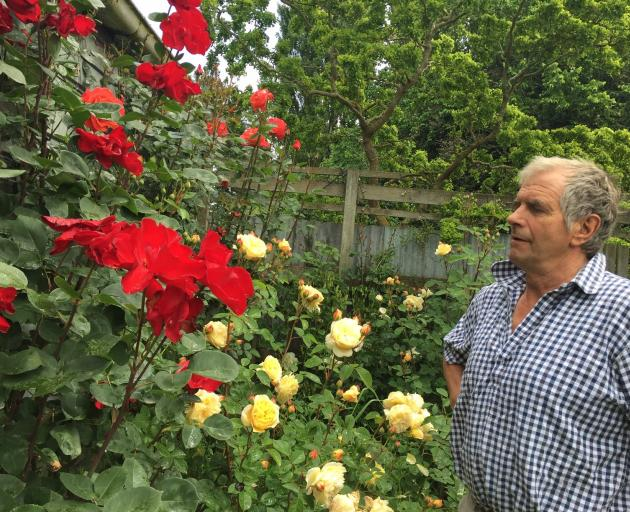 Sheep breeder Garth Shaw in his home garden at Wharetoa, near Balclutha, where he loves to work...
