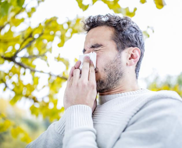 Research shows a large proportion of the population live with asthma and allergies such as hay...