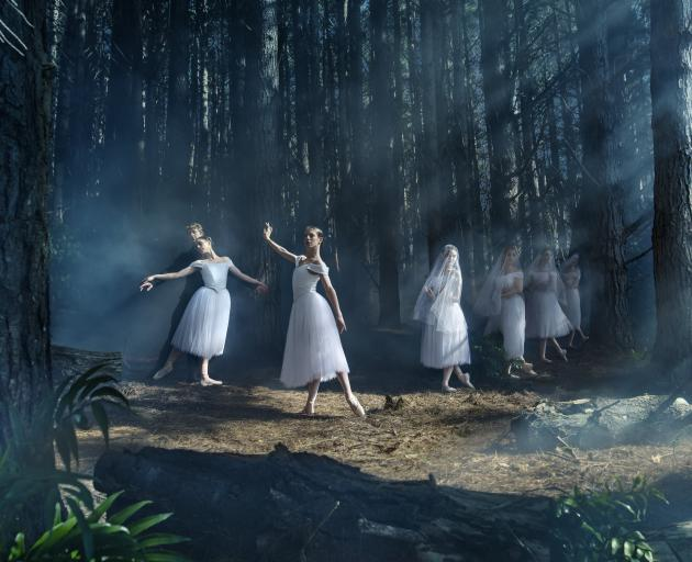 Royal New Zealand Ballet is bringing Giselle to Dunedin. PHOTO: ROSS BROWN