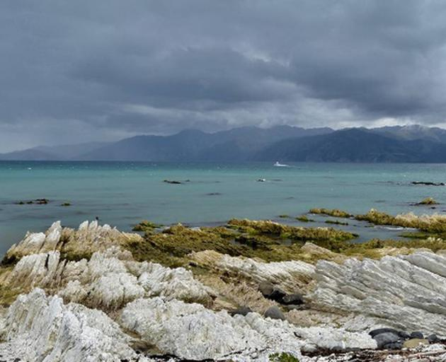 The woman went missing of the coast of Kaikōura. Photo: NZ Herald