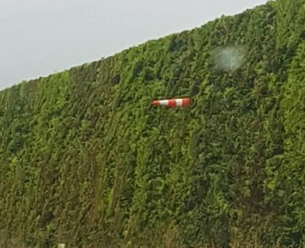 One of the cones from the bridge could be seen high up in a nearby hedge. PHOTOS: SOUTHLAND...